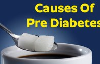 Does Sugar Cause Diabetes ?