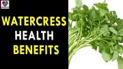 Watercress Health Benefits – Health Sutra – Best Health Tips