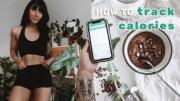 TRACKING CALORIES 101 – Calorie deficit -maintenance &amp – muscle gain
