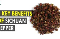 6 Key Benefits Of Sichuan Pepper – Health Sutra – Best Health Tips