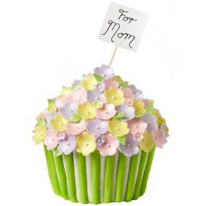 cup cake geant wilton2