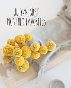 July/August Monthly Favorites for Cookie Dough & Oven Mitt