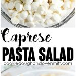 Caprese Pasta Salad - Pasta salad fanatics, you have to try out this one! There's a balsamic vinaigrette dressing, long pasta spirals, fresh mozzarella pearls, halved cherry tomatoes, and ribbons of basil! It's the perfect summer salad for picnics!