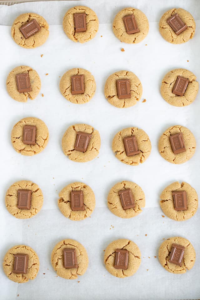 overhead photo of peanut butter cookies on a parchment lined baking sheet in 4 rows of 5