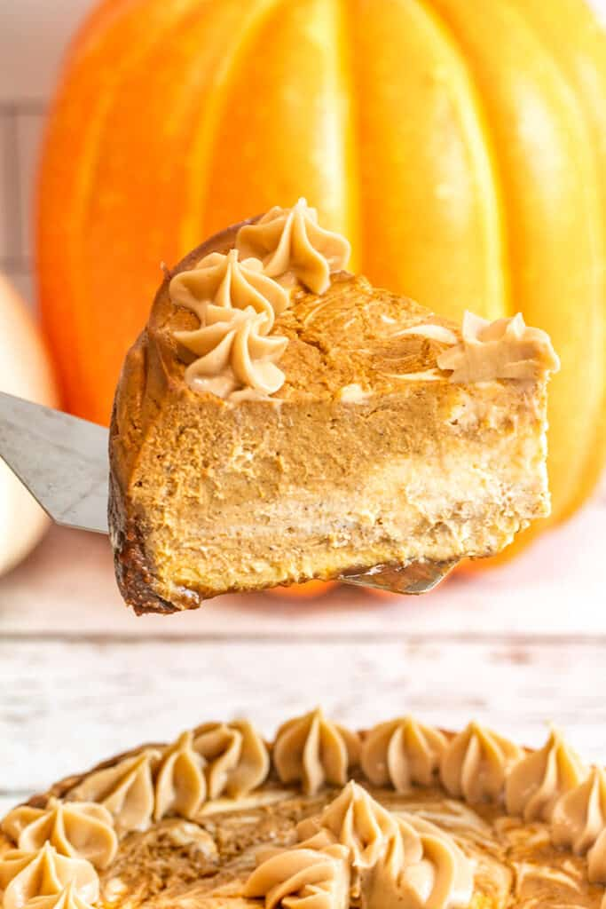 slice of pumpkin cheesecake on a serving utensil with a pumpkin behind it