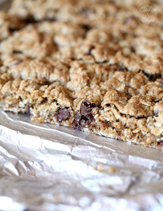 Salty Chocolate Chip Oats Bars ~ A yummy chocolate chip treat loaded with chewy oats!