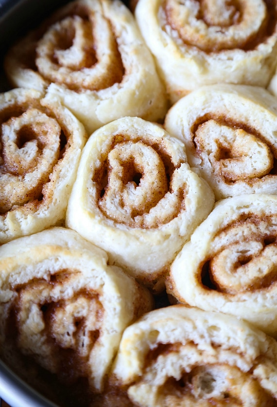 Biscuit Cinnamon Rolls fresh out of the oven ready to be glazed!