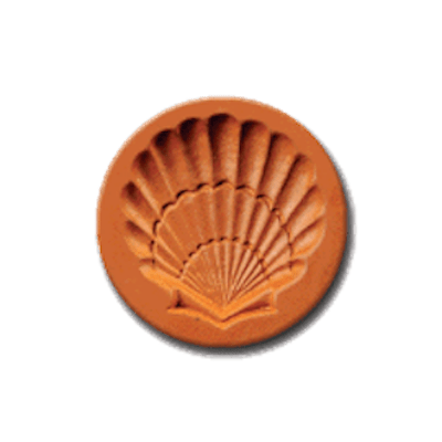 1076 Seashell Cookie Stamp   CookieStamp.com