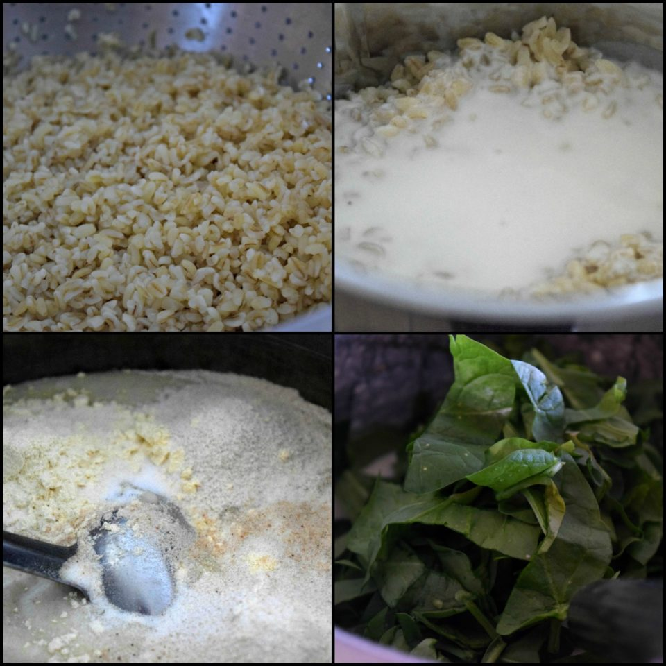 Oil Free Bulgur Wheat Spinach IdliPower Breakfasts South Indian