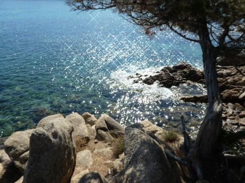 Crystal clear waters in Baia Sardinia
