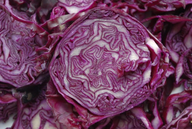 red cut cabbage