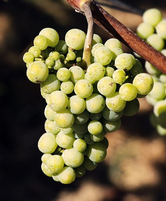 simple strategies for enjoying your wine more - Simple Strategies For Enjoying Your Wine More