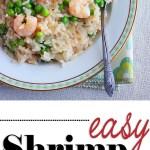 shrimp recipes with rice