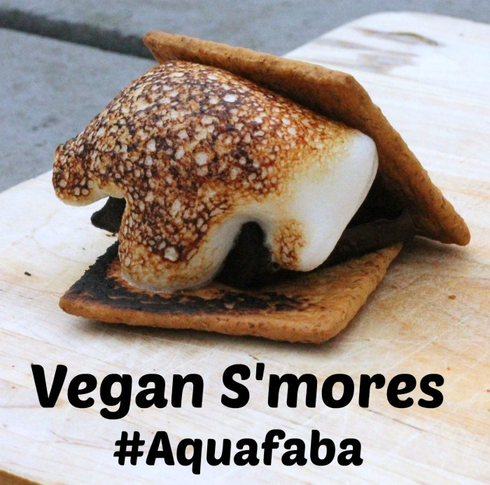vegan s'mores made with aquafaba marshmallow fluff