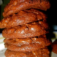 The most chocolaty cookies EVER.