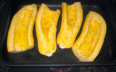 Butterstick Squash