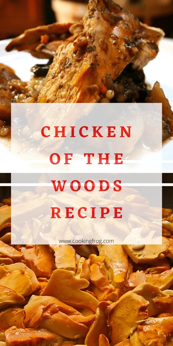 Chicken of the Woods Recipe