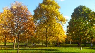 Autumn in Kensington Garden
