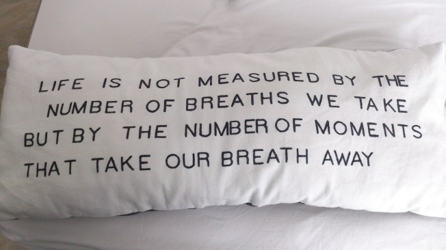I love this pillow in our guesthouse