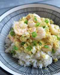 shrimp and egg over rice with scallion.