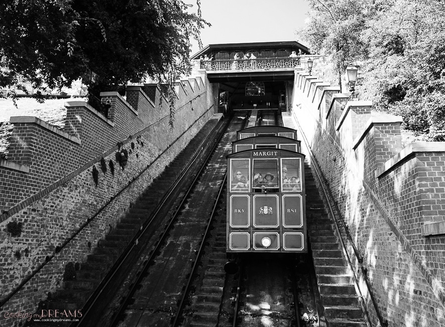 Budapest funicular in black and white