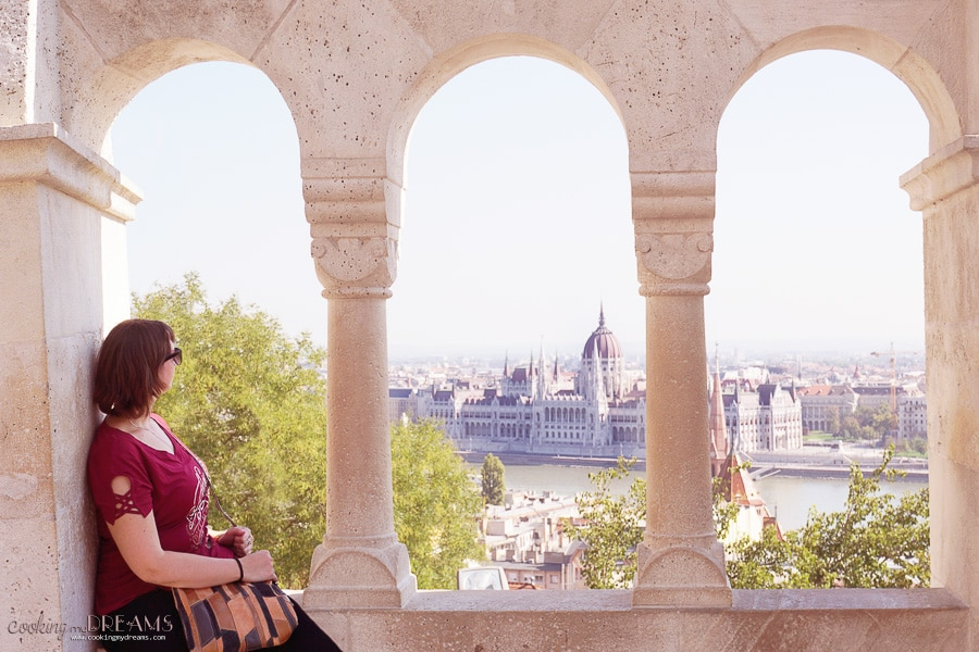 sitting on a window looking at the budapest parliament