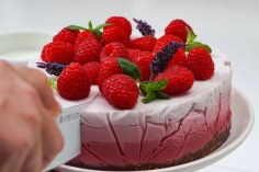 Raspberry coconut milk cake by Ilona