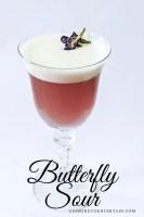 butterfly sour cocktail on cookingtoentertain