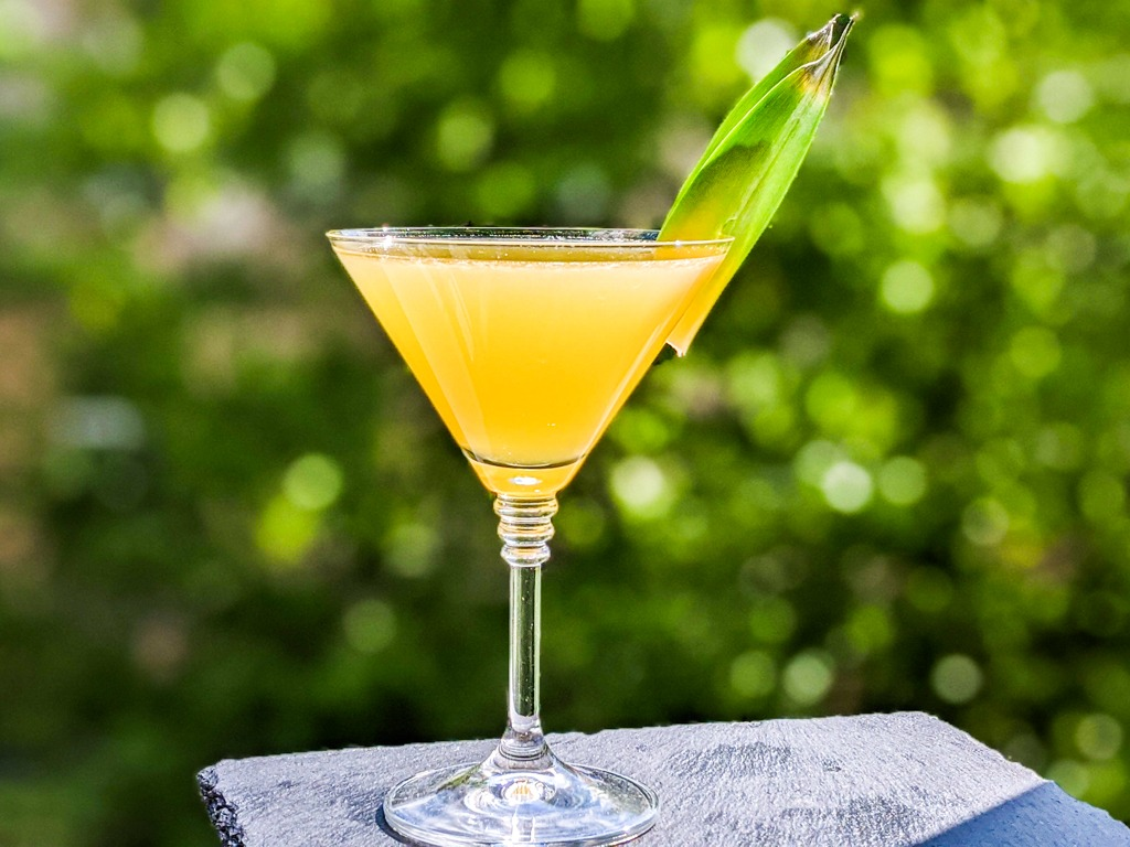 Yellow bird cocktail in a martini glass