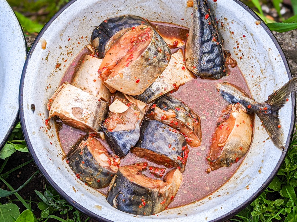 BBQ Chili Mackerel in the marinade after one hour
