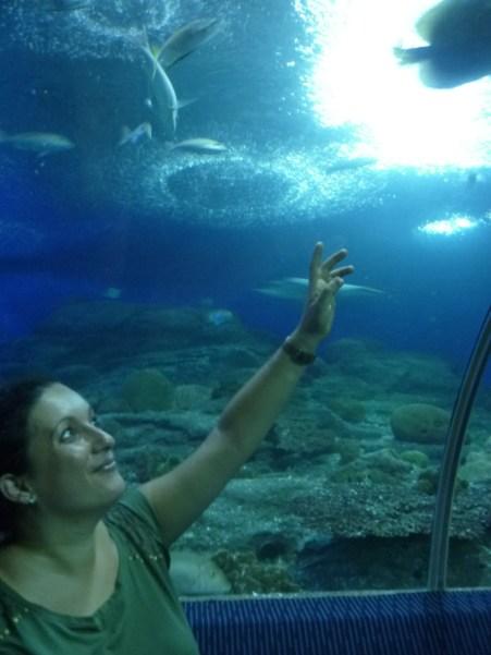Pattaya Underwater World 1 - cookingtrip.wordpress.com