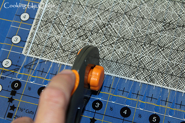 Rotary cutter with Stripology Ruler