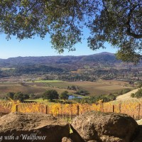 Destination: Sonoma Valley 2017