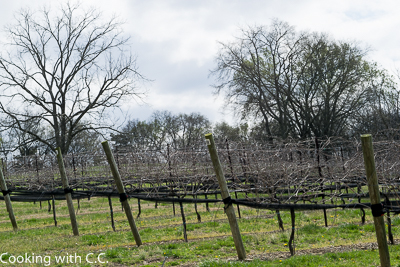 The Vines At Arrington