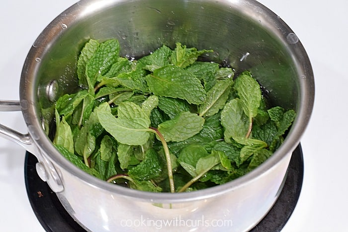 Peppermint Syrup  Cooking With Curls