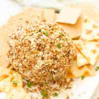 Cheeseball {Parmesan Ranch!}