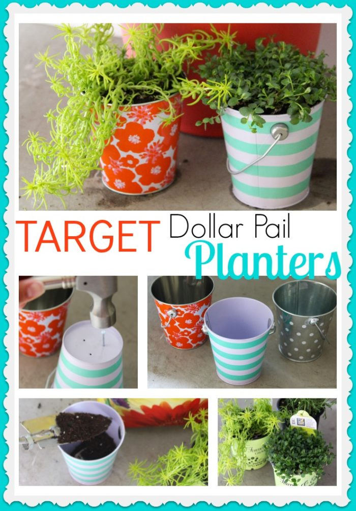 Target Dollar Pail Planters Cooking With Ruthie
