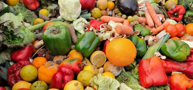Zero Food Waste – was kann ich tun?