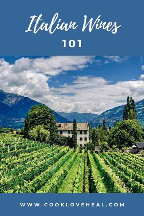 Italian Wines 101: A Beginner's Guide • Cook Love Heal by Rachel Zierzow