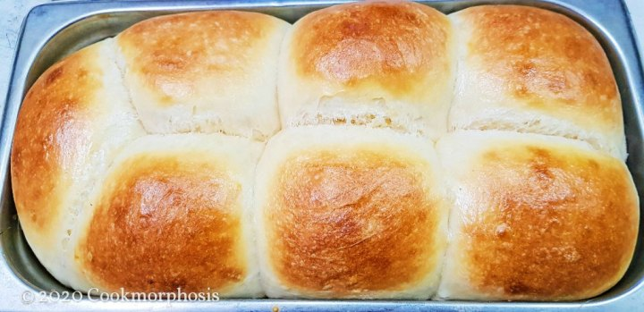 ultimate dough dinner rolls