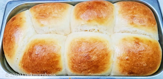 ultimate dough dinner rolls