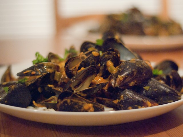 Fresh mussels dish