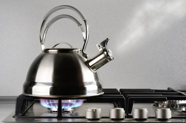 tea kettle for gas stove