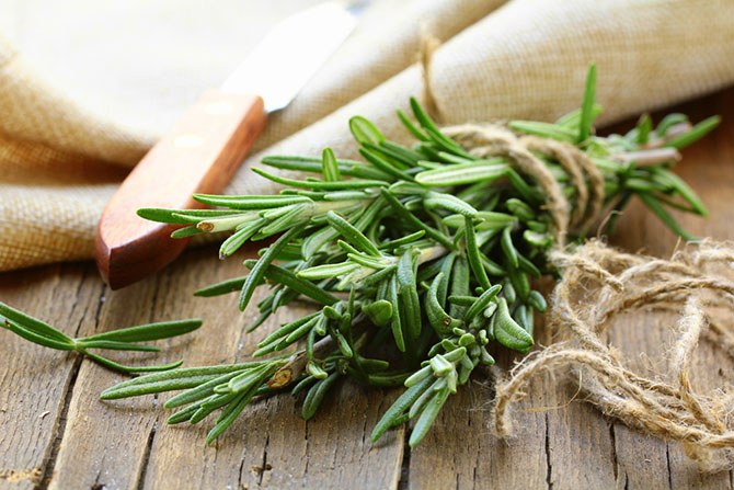 thyme substitute - Rosemary