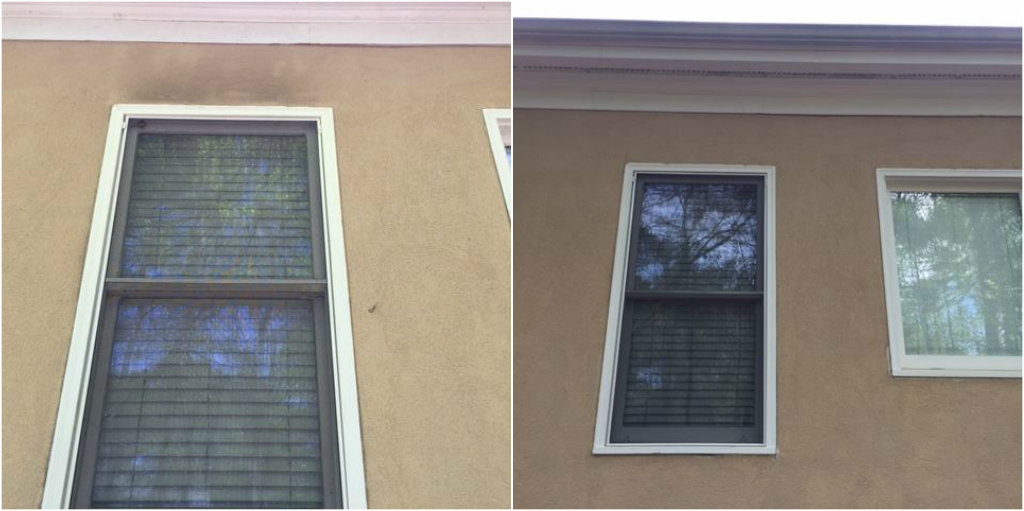 Window Cleaning Services Bogart