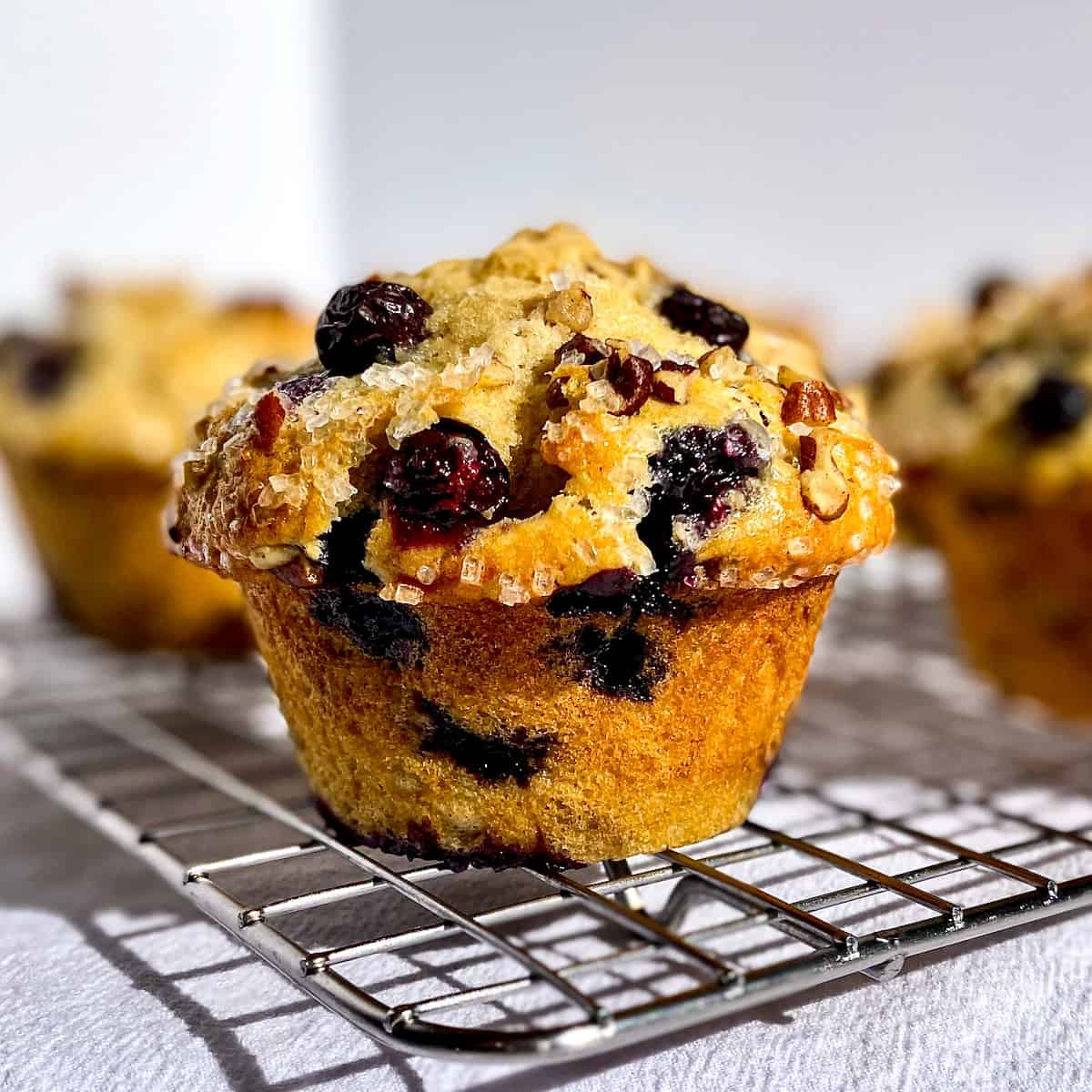 Not So Basic Buttermilk Muffins: Choose Your Own Adventure