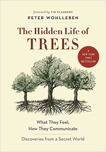 the hidden life of trees peter wohlleben book cover