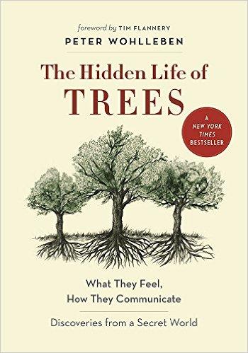 the hidden life of trees peter wohlleben book cover