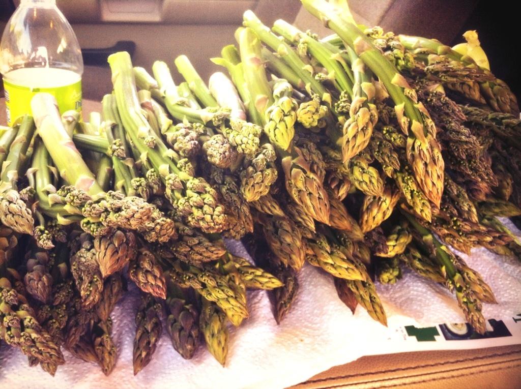 Sautéing the Wild Asparagus