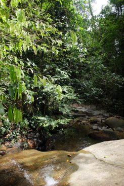 travel Kubah National Park
